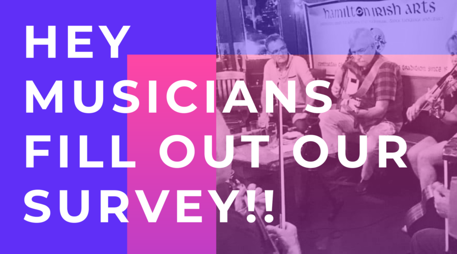 Musicians (or Aspiring Musicians)!  Fill out our Survey